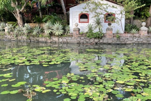 Small white home and trees at rivers edge covered by lily pads in Granada, Nicaragua