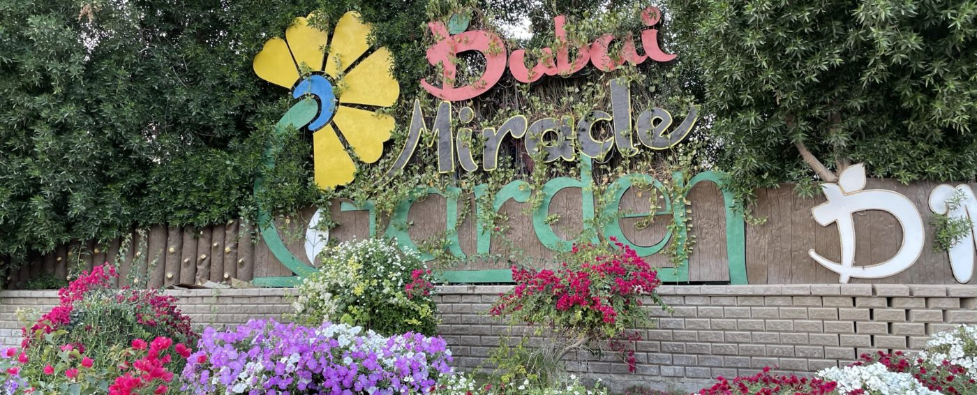 Beautiful, colorful flowers surrounding the Miracle Garden sign in Dubai